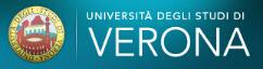 维罗纳大学